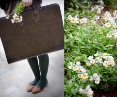 Portfolios and Flowers